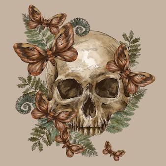 Mystic skull vintage greeting card, moth death, fern illustration. witchcraft skull.