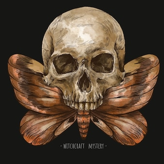 Mystic skull vintage greeting card, moth death illustration. witchcraft character.