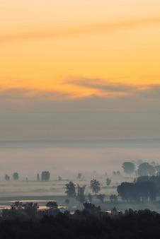 早朝の霧の中の森の神秘的な眺め。夜明け前の空の下で木のシルエットの中で霧。水に金の光の反射。穏やかな朝の雄大な自然の大気のミニマルな風景。