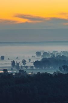 早朝のもやの下の森の神秘的な眺め。夜明け前の空の下で木のシルエットの間で霧。水中での金の光の反射。