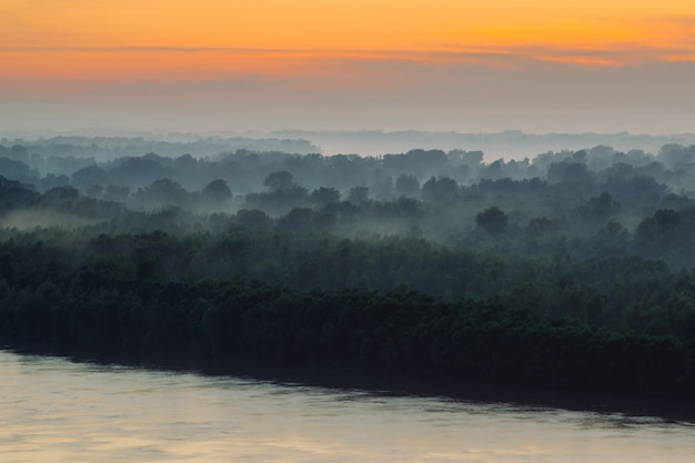 Mystical view on riverbank of large island with forest under haze at early morning. mist among layers from tree silhouettes under warm predawn sky.