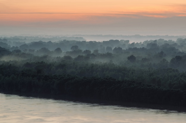 Mystical view on riverbank of large island with forest under haze at early morning.