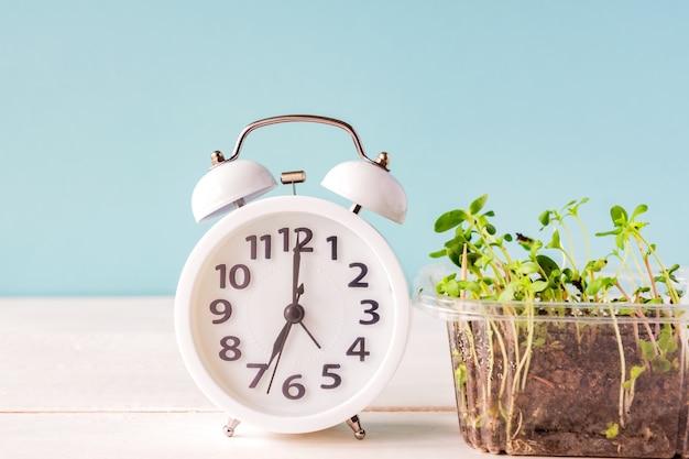 白い目覚まし時計は若い苗の芽に接続します。 n