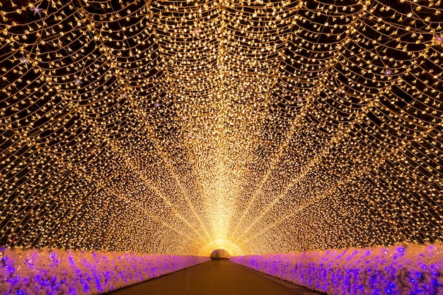 Nabana no sato garden at night nagoya.