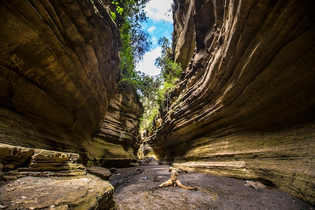 Каньон национального парка найваша адские ворота, полный животных. прогулка по кении или сафари на велосипеде