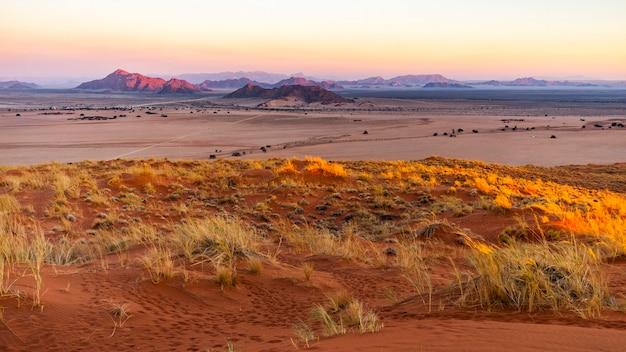 Заход солнца на парке namib naukluft от дюны elim около sesriem в намибии, африке.