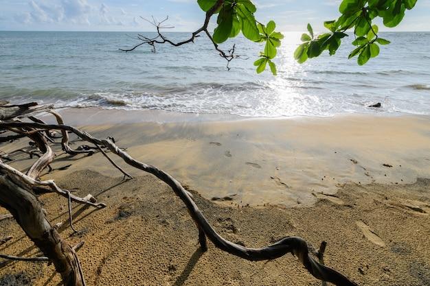 Натуральный черный пляж нангтонг в таиланде, провинция холак пхангнга, удивительный и невидимый таиланд