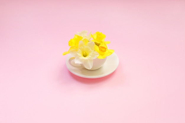 Narcissus in a cup on a pink background