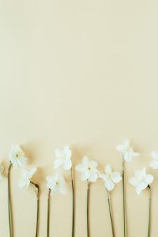 パステルで水仙の花