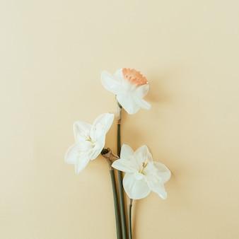 パステルに水仙の花の花束
