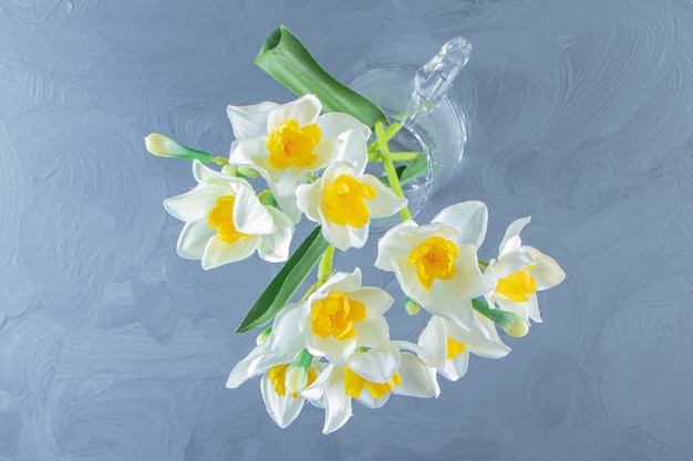 Narcissus in a glass jug, on the white table.