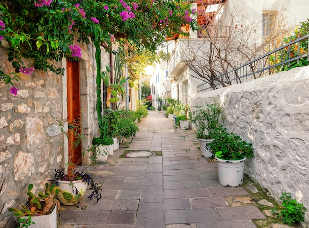 Narrow cobbled street with white and stone walls and flowers