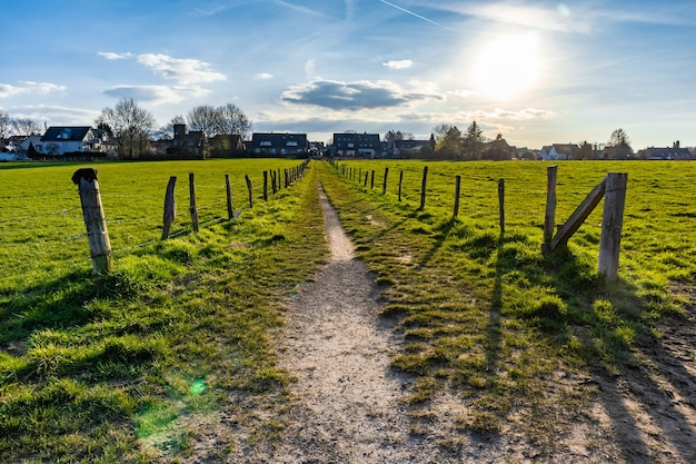 青い空の下の芝生のフィールドの真ん中にある狭い道