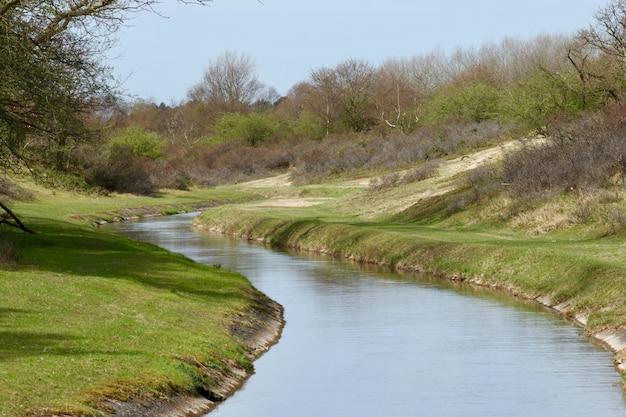 Узкая река в зеленой стране с множеством деревьев