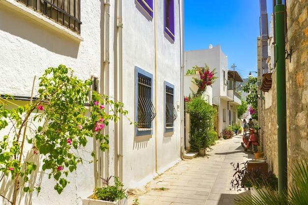 터키 보드룸(bodrum turkey) 구시가지의 좁은 거리에 꽃이 만발한 아름다운 오래된 고대 백색 가옥