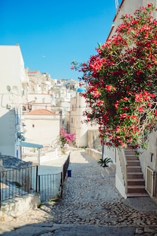 The narrow streets of the island with blue balconies, stairs and flowers.