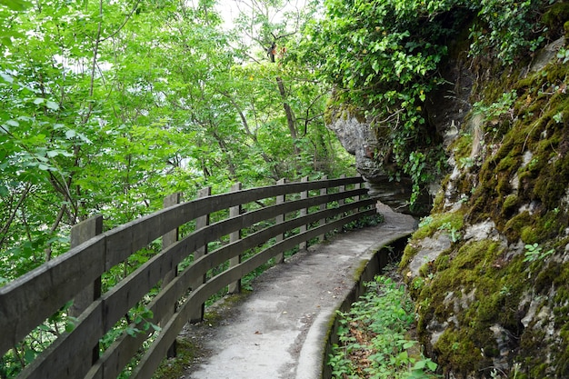 Narrow trail in a forested mountain with a wooden fence