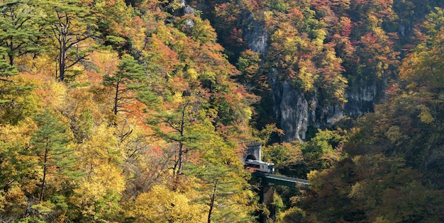 Naruko gorge valley with train railroad tunnel in miyagi tohoku japan panorama