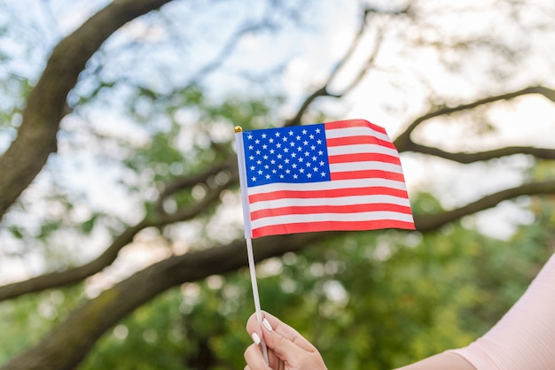 The national flag of america and this flag is among the wood