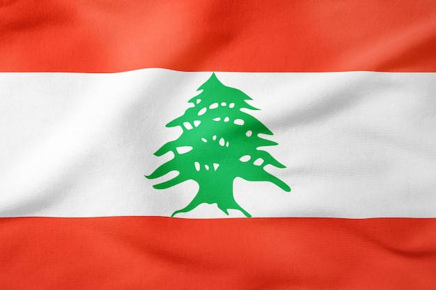 National flag of lebanon - rectangular shape patriotic symbol