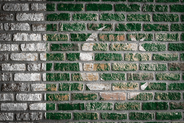 古いレンガの壁にパキスタンの国旗