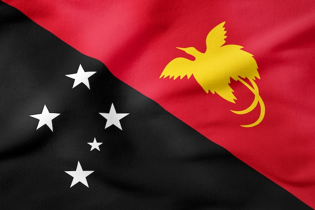National flag of papua new guinea - rectangular shape patriotic symbol