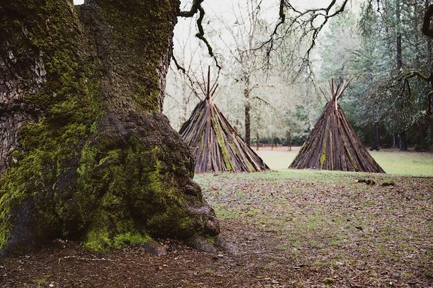 ネイティブアメリカンの伝統的なme-wuk式典の昼間の宿泊