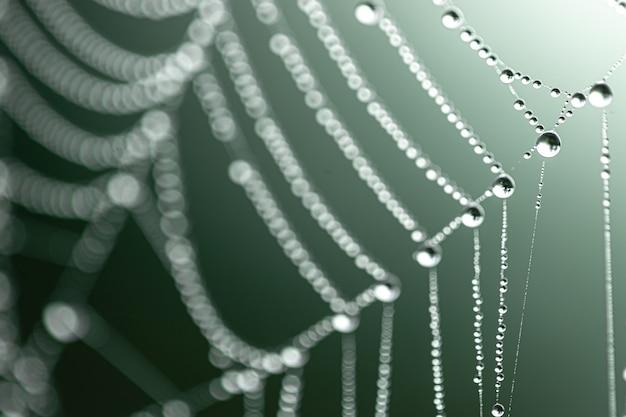 蜘蛛の巣にクリスタルデュードロップの自然な抽象的な背景。