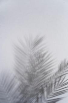Естественные и абстрактные тени