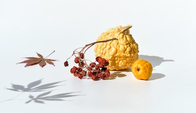 自然な秋の装飾、黄色のカボチャ、マルメロ、ドライナナカマドベリー