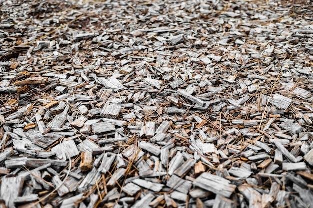 自然の背景は木材チップで構成され、木は根おおいのために地面に倒れました。