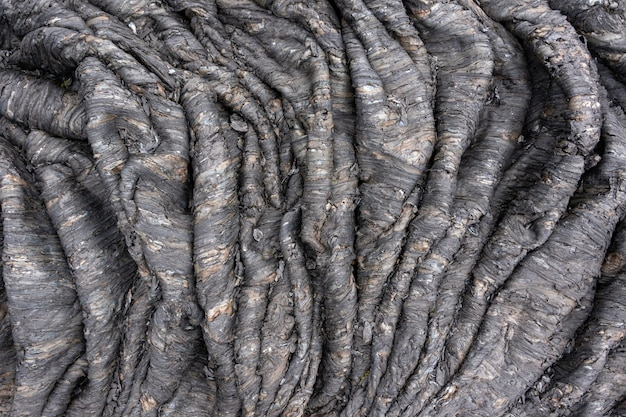 Natural background from solidified volcanic lava. rope lava is the result of slowing forward flow and accelerating backward flow. crumpled volcanic stones of kamchatka russia