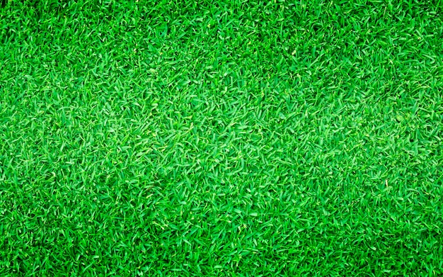 Natural background of green grass smal