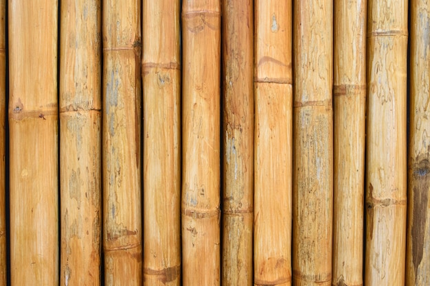Natural bamboo fence background in the garden