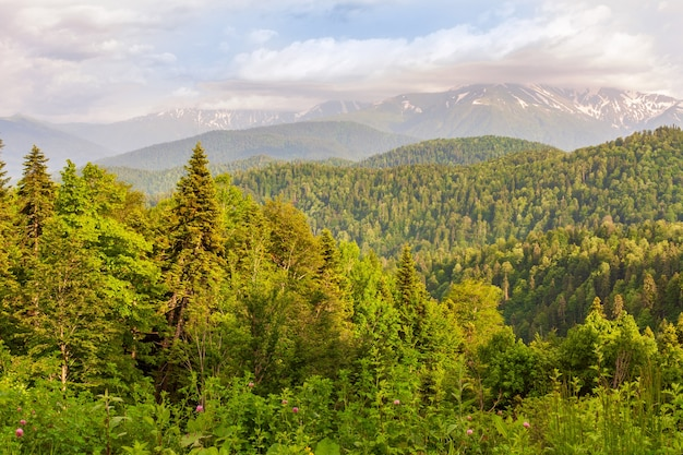 Natural beautiful landscape of the north caucasus mountains in the evening