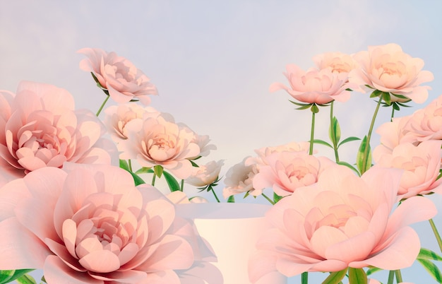 Natural beauty podium backdrop for product display with pink rose flower