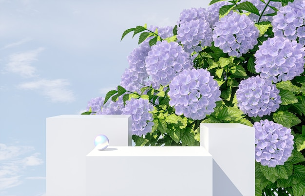 Natural beauty podium for product display with hydrangea flower. 3d render.