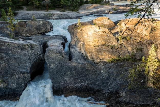 캐나다 bc 주 요호 국립공원의 내츄럴 브리지