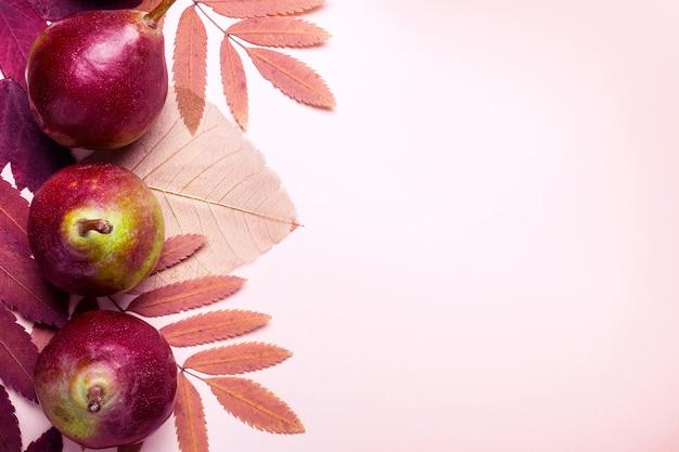 분홍색 배경에 마른 분홍색 잎과 배의 자연 구성. 가 수확 개념입니다.