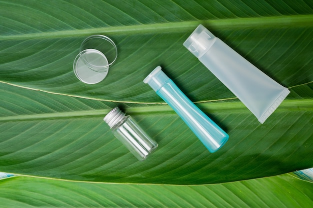 Natural cosmetics bottle containers on green leaf background