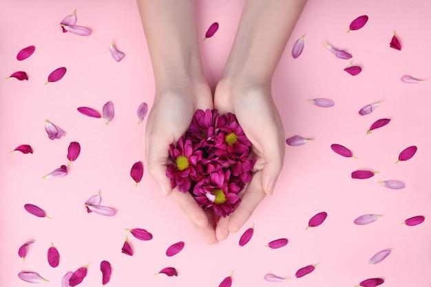 손의 피부, 보습 및 영양을위한 천연 화장품. 꽃 추출물, 그녀의 손에 붉은 꽃잎과 꽃을 들고 여자