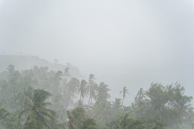 Natural disaster concept. tropical tempest bringing a torrential rain during the monsoon season at noon