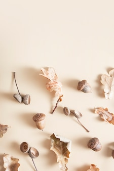 Natural fallen leaves isolated on beige