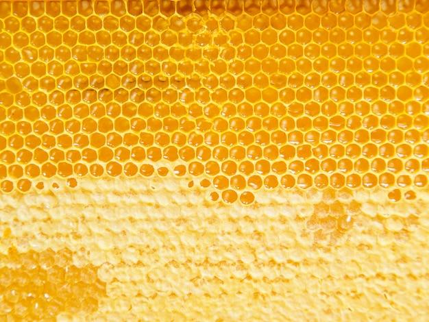 Natural fresh honeycombs texture