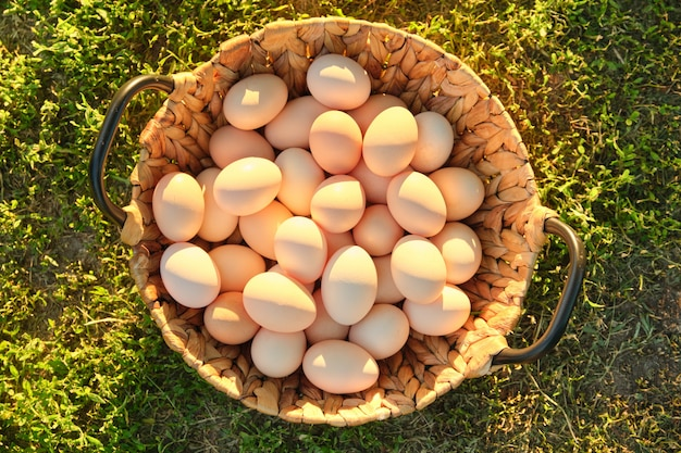 Natural fresh organic farm eggs in basket
