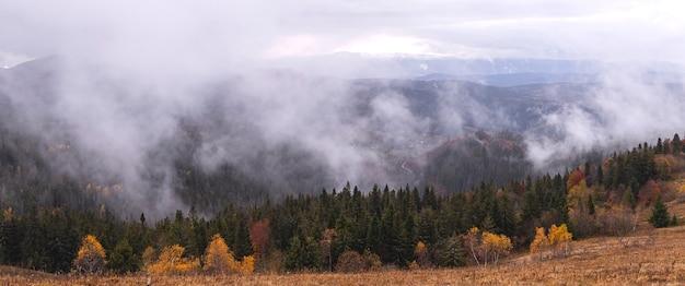 空と霧の雲と曇りの日に黄色の木とモミの木と秋の山々の自然な暗い背景バナーの壁紙