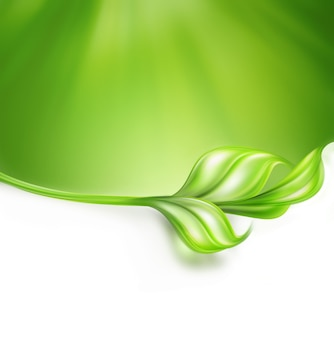 枝と葉と自然な緑の背景