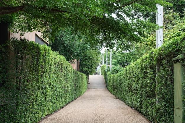 자연 녹색 부시 정원과 자갈 산책로
