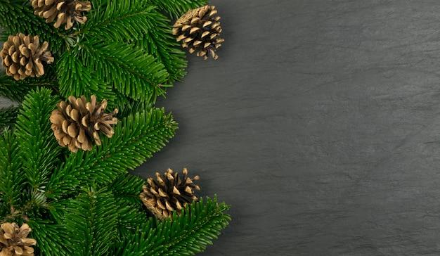 白い背景の上の自然の緑の小ぎれいなな小枝。緑豊かなモミの枝や松の小枝小枝テクスチャトップビュー
