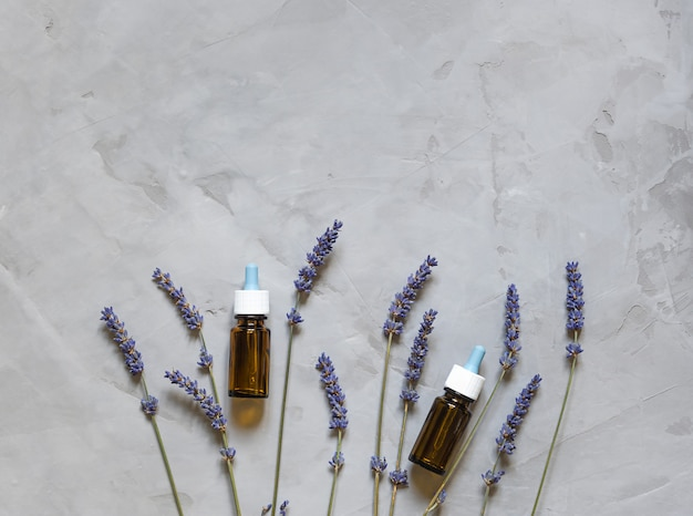 Natural herb lavender and bottles flat lay on grey background.